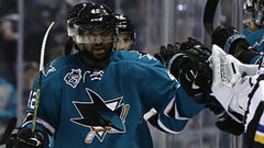 Man on Stihl: Joel Ward
