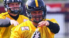 Austin says Collaros is on track
