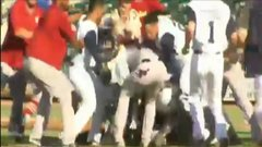 Must See: Bench-clearing brawl leads police to come on field